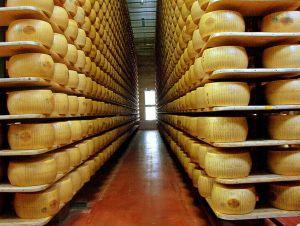 794px-Parmigiano_reggiano_factory