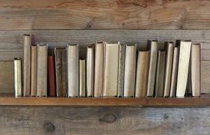 alte Bcher auf Holzregal.