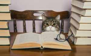 books-author